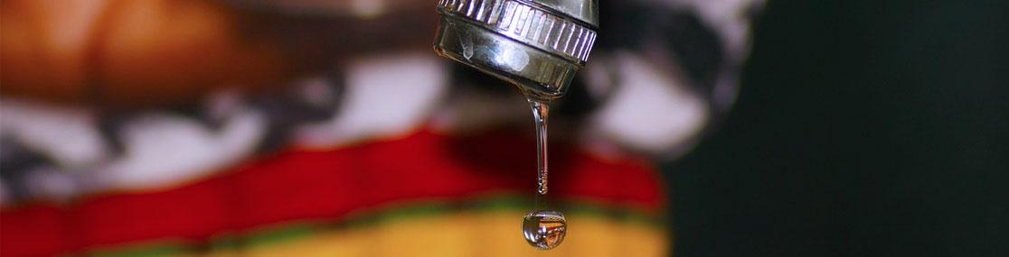 Plumbing Leaks Fixture